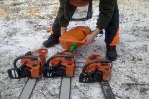 Szkolenie dla drwali - przygotowanie pilarek